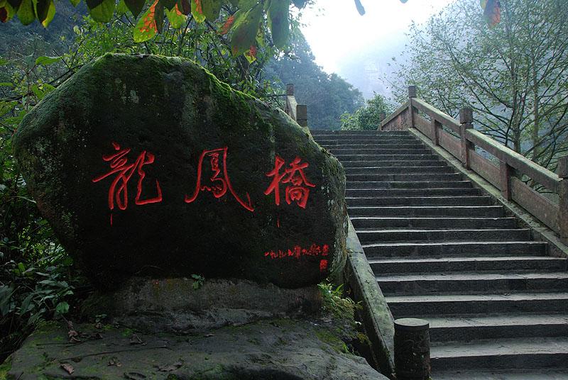 驴行日志>四川雅安碧峰峡
