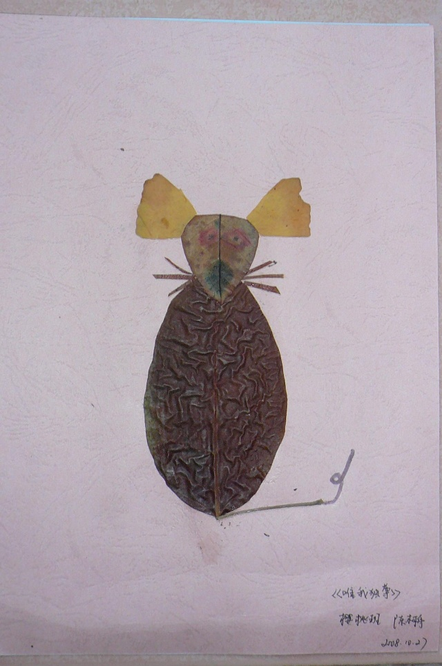 因为一直都喜欢银杏叶,也看过银杏叶做成的蝴蝶贴画非常漂亮,所以和果图片