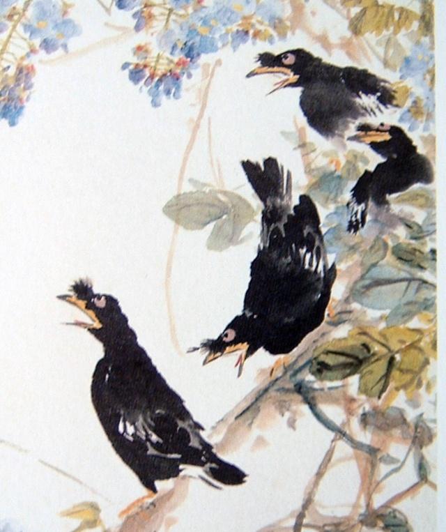 小鸟写意画图片图片
